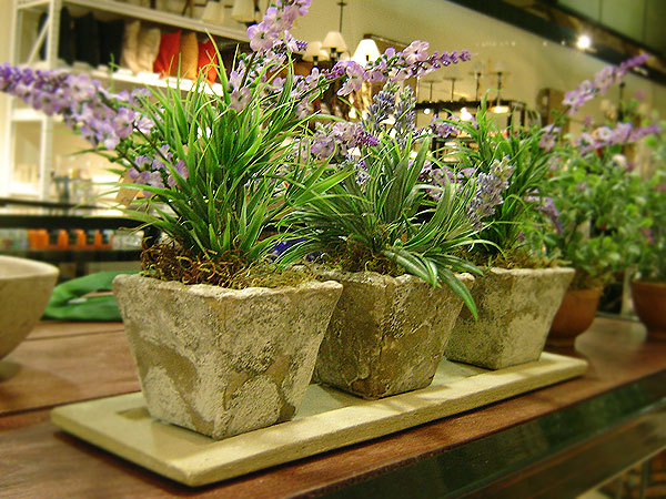 Decocasa en colombia plantas artificiales tan reales - Plantas artificiales decorativas ...