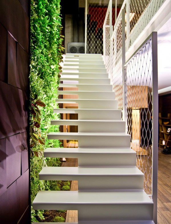 foto-escalera-planta