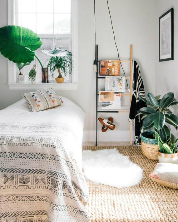 foto-plantas-dormitorio